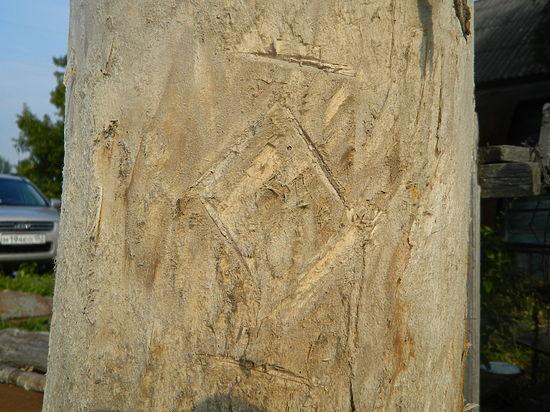 В Нижегородской области найдена уникальная борть с родовым знаком терюханской мордвы