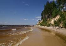 Экологи обнаружили незаконную застройку на берегах Горьковского моря