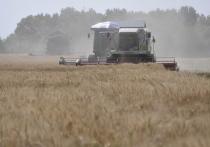 Нижегородским сельхозпроизводителям пока не хватает горючки и кадров