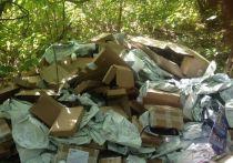 Стало известно, кто выбросил сотни посылок с персональными данными под Москвой