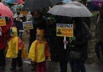 В Подольске люди вышли на митинг за чистый воздух
