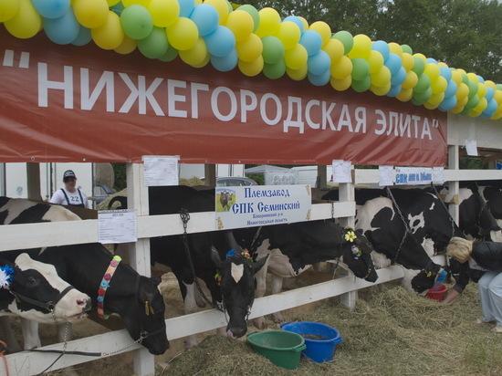 Баланс не сходится в сельском хозяйстве Нижегородской области